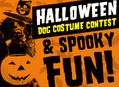 Halloween Dog Costume Contest at Amoeba Hollywood Monday, October 31