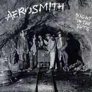 aerosmith night in the ruts lp
