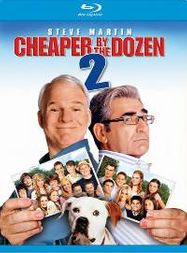 Cheaper by the Dozen 2 (BLU)