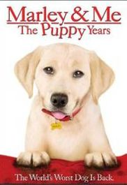 Marley & Me: The Puppy Years (DVD)