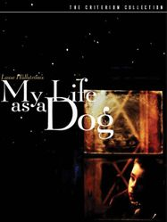 My Life as a Dog [1985] [Criterion] (DVD)
