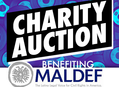 Charity Auction to Benefit MALDEF with Martin Moreno at Amoeba Hollywood April 1