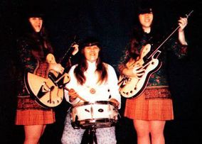 The Shaggs Albums