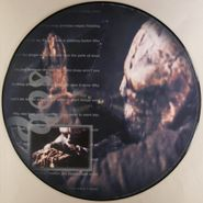"""Tool, Sober [Picture Disc] (12"""")"""