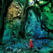 Jacco Gardner, Cabinet Of Curiosities (CD)