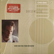 David Wilcox, How Did You Find Me Here (LP)