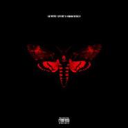 Lil Wayne, I Am Not A Human Being II (CD)