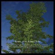 Loney, Dear, Loney, Noir (CD)