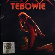 "Jimmy Fallon, Tebowie / Reading Rainbow [RECORD STORE DAY 2012] (7"")"