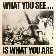 Alternative TV, What You See...Is What You Are (LP)