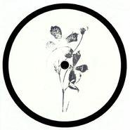 """Roland Appel, Plangent #010 (12"""")"""