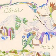 The Chris Robinson Brotherhood, Barefoot In The Head (CD)