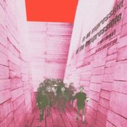 Blonde Redhead, In An Expression Of The Inexpressible (LP)