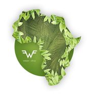 """Weezer, Africa / Rosanna [Black Friday Shaped Picture Disc] (12"""")"""