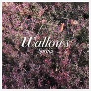 Wallows, Spring EP [Pink & Green Vinyl] (LP)