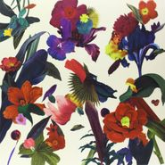 Washed Out, Paracosm (LP)