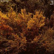 Jefre Cantu-Ledesma, Tracing Back The Radiance (LP)