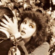 Kate Bush, Remastered In Vinyl I [Box Set] (LP)