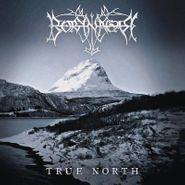 Borknagar, True North [Silver Vinyl] (LP)