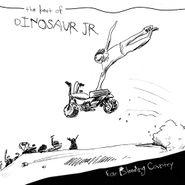 Dinosaur Jr., Ear Bleeding Country: The Best Of Dinosaur Jr. [Deluxe Edition] (CD)