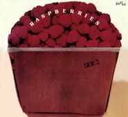 The Raspberries, Side 3 (CD)