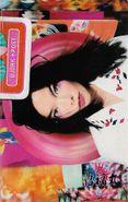 Björk, Post (Cassette)