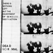 Dead Normal, There Is Nothing Left But The Enjoyment Of Senseless Destruction (LP)