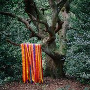 James Holden, The Animal Spirits (LP)
