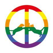 Hype Williams, Rainbow Edition (LP)