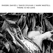 Rhodri Davies, There Is No Love [Record Store Day White Vinyl] (LP)