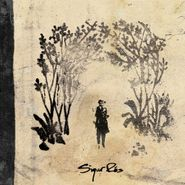 "Sigur Rós, Takk [180 Gram Vinyl 2LP + 10""] (LP)"