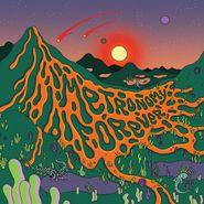 Metronomy, Metronomy Forever (LP)
