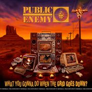 Public Enemy, What You Gonna Do When The Grid Goes Down? (LP)