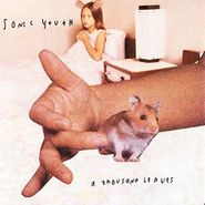 Sonic Youth, A Thousand Leaves (LP)