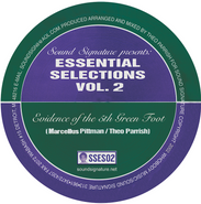"Theo Parrish, Essential Selections Vol. 2 (12"")"