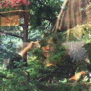 Jennifer Castle, Angels Of Death (LP)