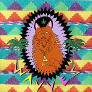Wavves, King of the Beach (LP)