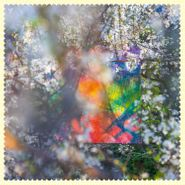 Four Tet, Sixteen Oceans (LP)