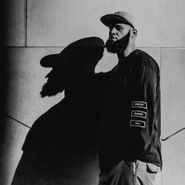 Homeboy Sandman, Veins (LP)