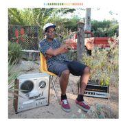DJ Harrison, HazyMoods (LP)