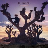 DJ Koze, Knock Knock [Deluxe Box Set] (LP)
