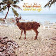 Fruit Bats, Gold Past Life [Opaque Aqua Vinyl] (LP)
