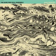 The Sure Fire Soul Ensemble, Build Bridges (LP)