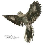 John Zorn, The Mockingbird (CD)