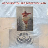 robert pollard of course you are lp