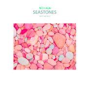 Ned Lagin, Seastones: Set 4 & Set 5 [Record Store Day] (LP)