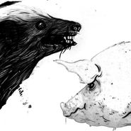 "Clark, Honey Badger / Pig (12"")"