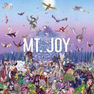 Mt. Joy, Rearrange Us (LP)