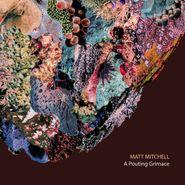 Matt Mitchell, A Pouting Grimace (CD)