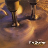 The Posies, Frosting On The Beater (LP)